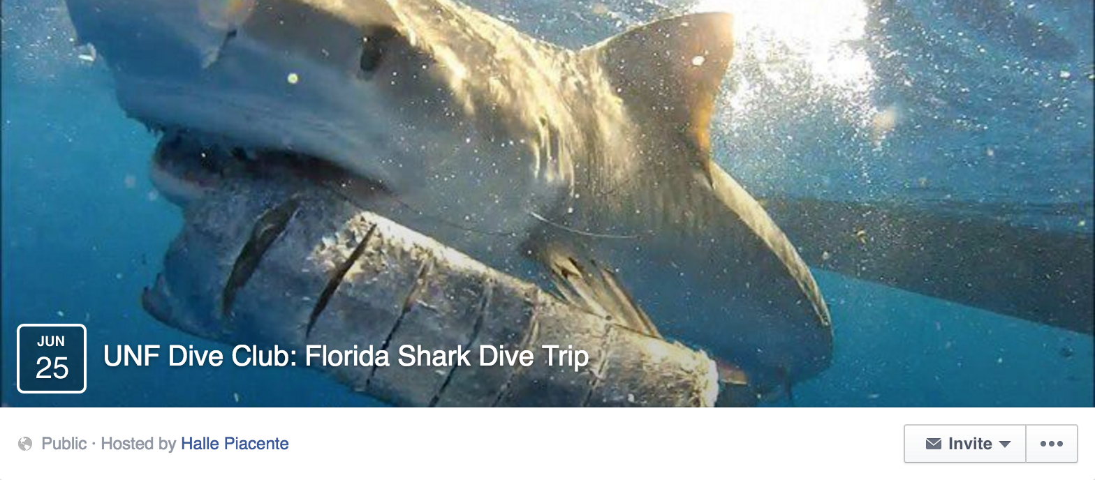 UNF Dive Club invites students to swim with sharks