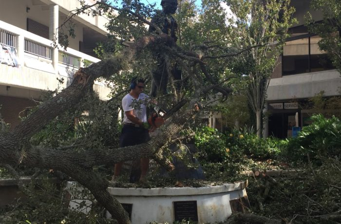 UNF alumni Juan Carlos Villatoro came to campus to help clear debris from the Ghandi statue after Hurricane Matthew. Photo by Pierce Turner