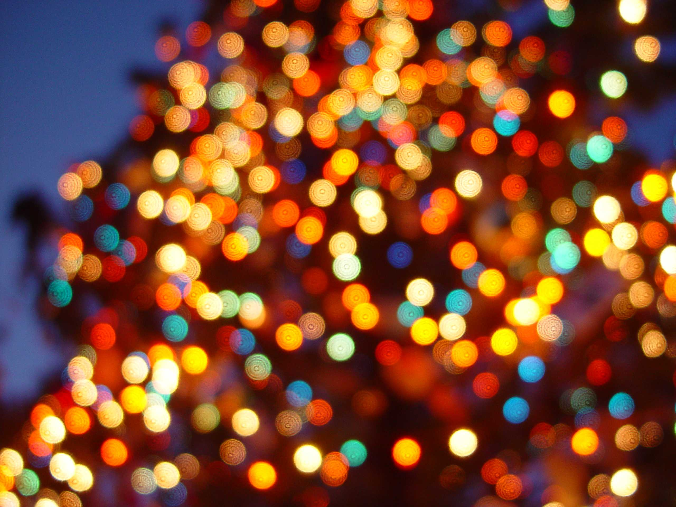 Local's Guide: Where to see lights