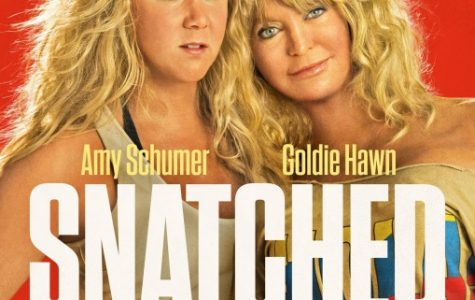 'Snatched' briefly captures audience but fails to hold attention