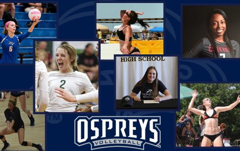 Volleyball signs seven new students