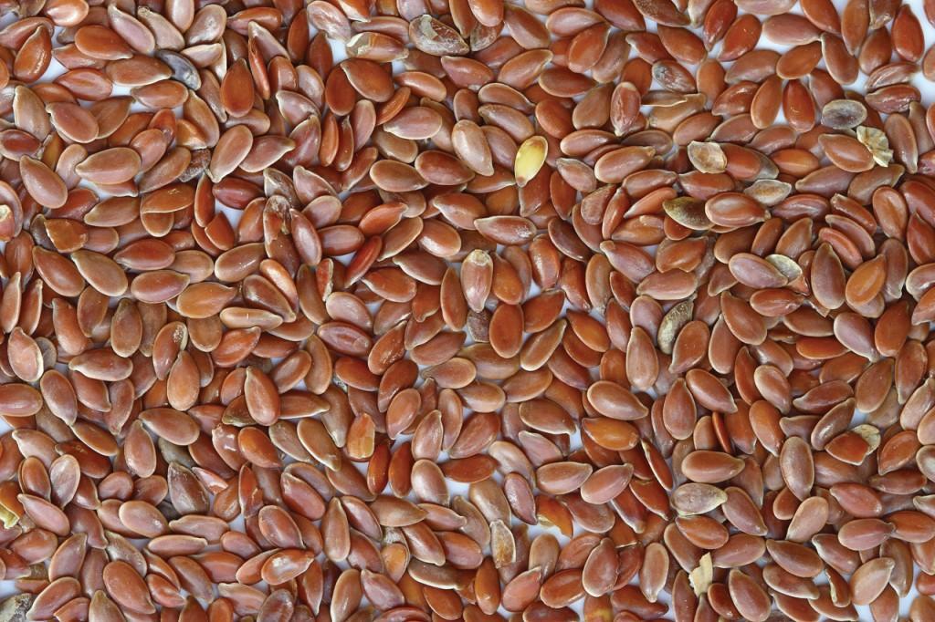 flaxseeds_wikicommons