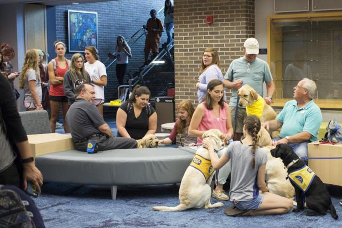 "Students take advantage of the ""PAWS Your Stress"" event while others wait for a turn to pet and play with the service dogs in-training from Canine Companions.  Photo by Michael Herrera"