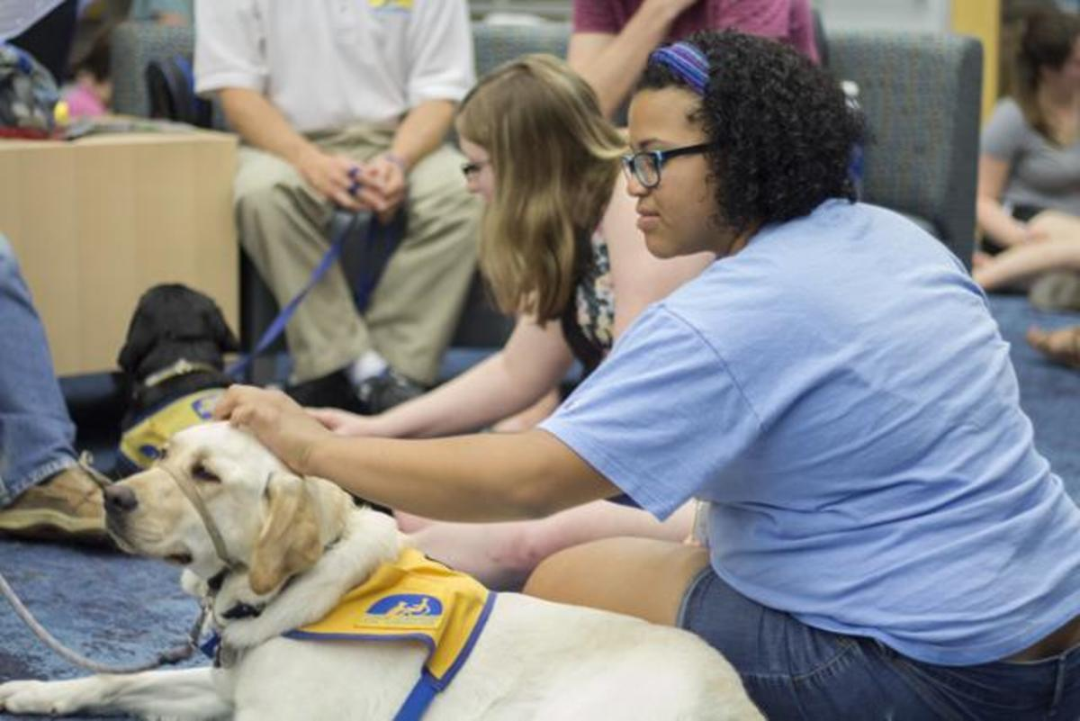 Danielle Hammond, public relations junior, enjoys some quality downtime from the intensity of finals with one of the loving service dogs in-training.  Photo by Michael Herrera