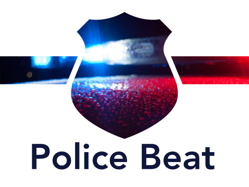 Police Beat: Two thefts, bathroom weed found