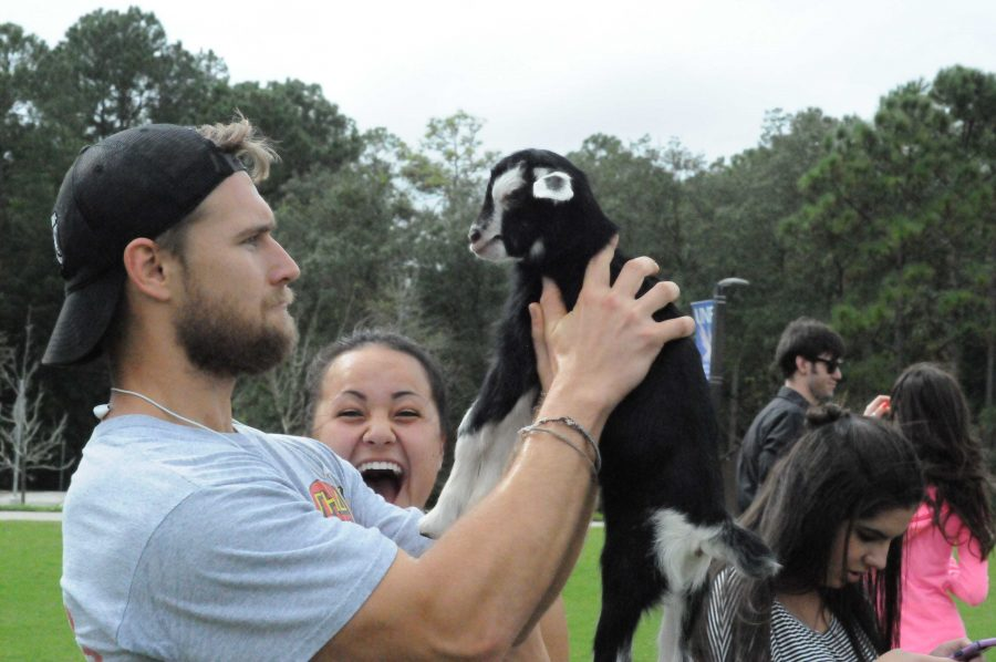 Students could pick up many of the smaller animals.  Photo courtesy Osprey Productions