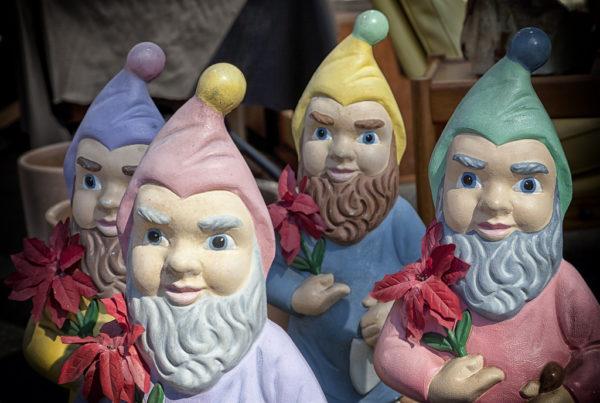 Gnomes. Courtesy of
