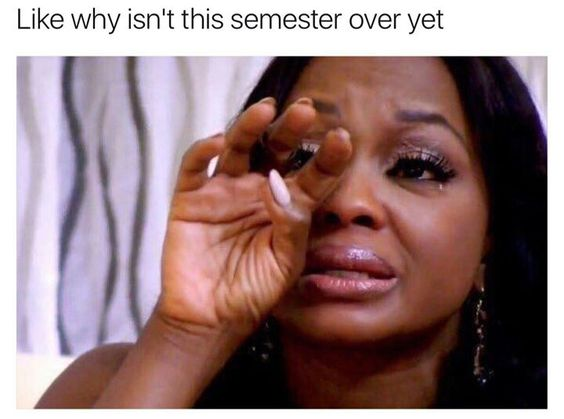 Funny Memes For College Students : Finals week memes to slow tide of stress u unf spinnaker