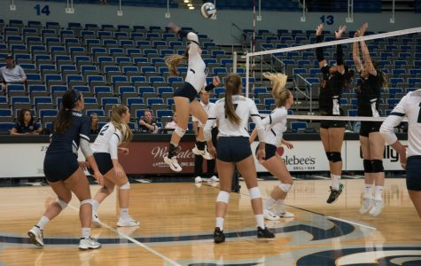 Volleyball sweeps FAMU
