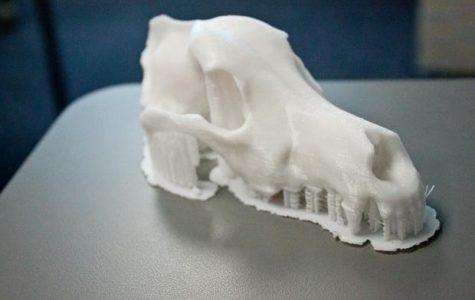 UNF's 3D printing lab