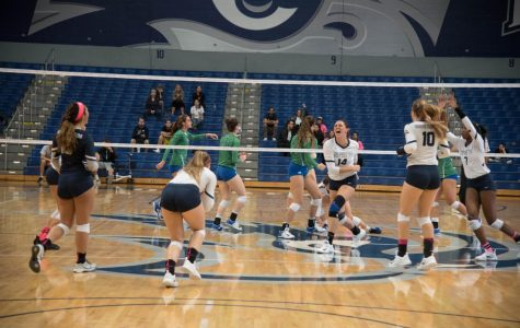 Volleyball upset No.1 FGCU