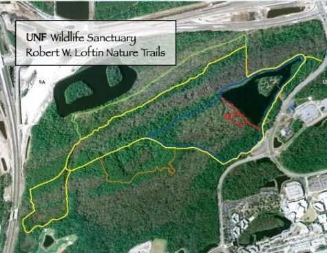 image regarding Unf Printable Map referred to as UNF Mother nature Trails again towards all-natural, unless of course Purple Maple Boardwalk