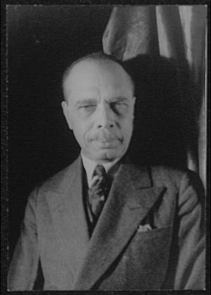 <i> James Weldon Johnson </i>