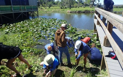UNF students take charge to help restore Lake Jesup