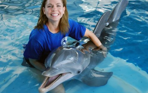 Behind the scenes of 'Dolphin Tale': Winter the dolphin's trainer speaks at UNF