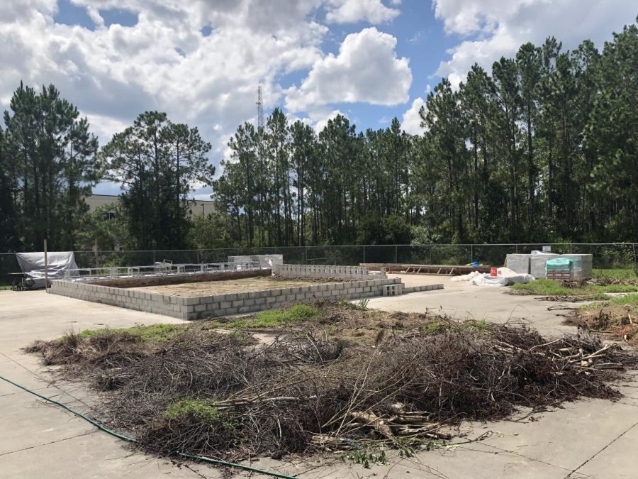 Coastal Engineering Department responds to Student Government bill focusing on the old skatepark