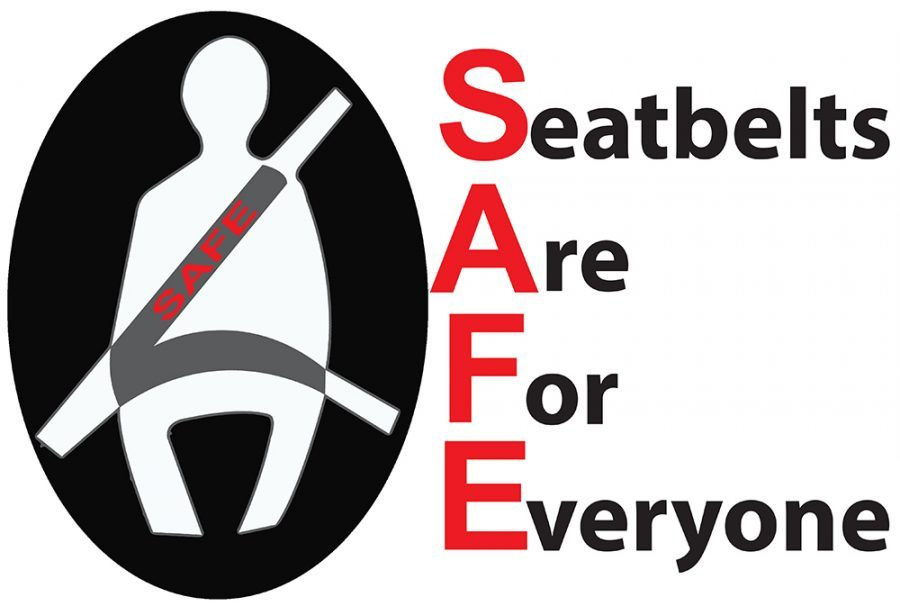 Photo courtesy of LITE Team Seat Belt Safety