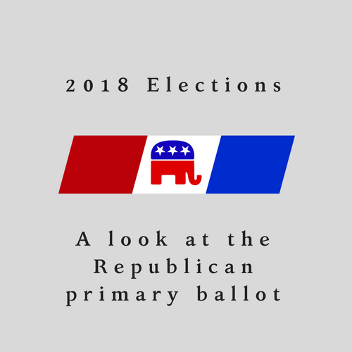A look at the Republican primary ballot