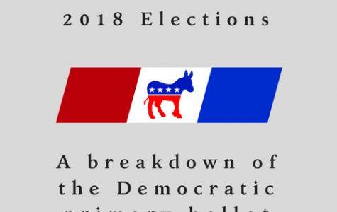 A breakdown of the Democratic primary ballot