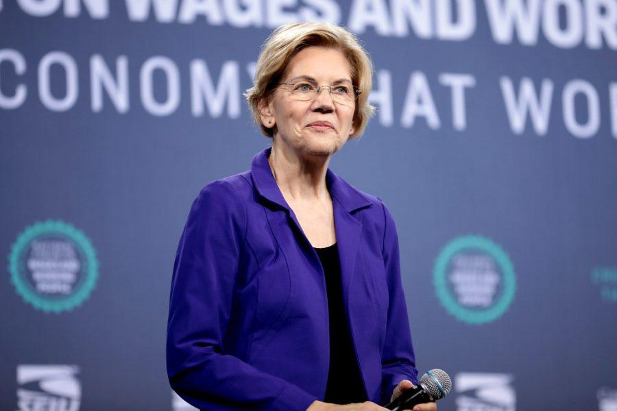 2020 democratic presidential candidate: Elizabeth Warren