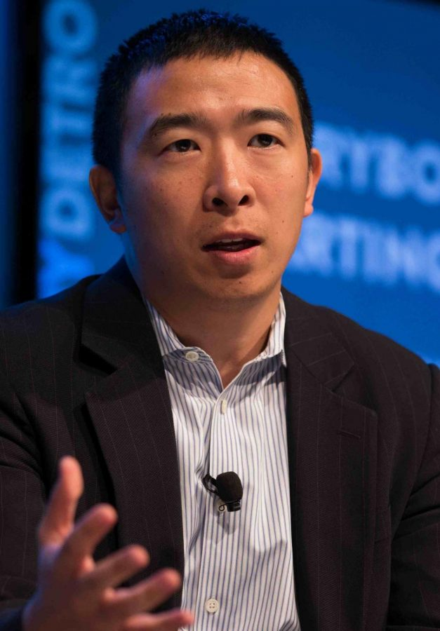 2020 democratic presidential candidate: Andrew Yang