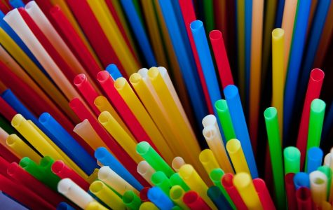 Florida looks into saying goodbye to plastic straws
