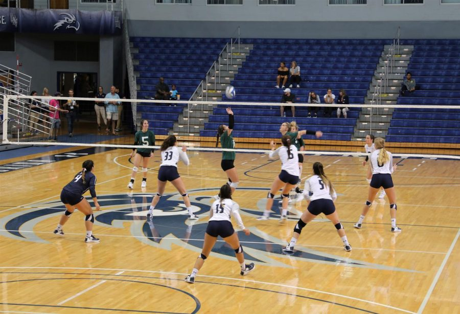 Hatters pull off reverse sweep against Ospreys