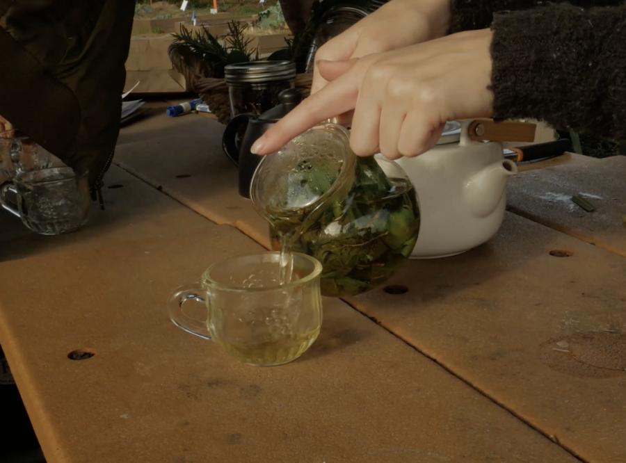 Herbal Tea at 3