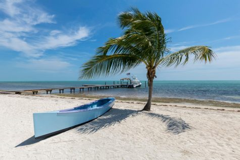 Officials announce the Florida Keys will reopen to visitors June 1