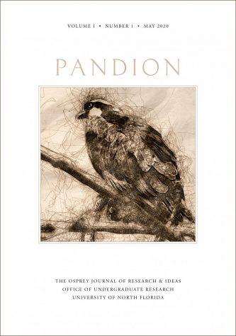 Working mock-up of Pandion