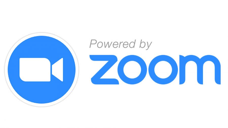 How much has Zoom profited in these past few months and who created it?