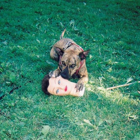 "Album review: ""Cody"" by Joyce Manor"