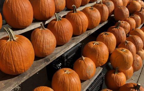 D.I.Y lit mason jar pumpkins