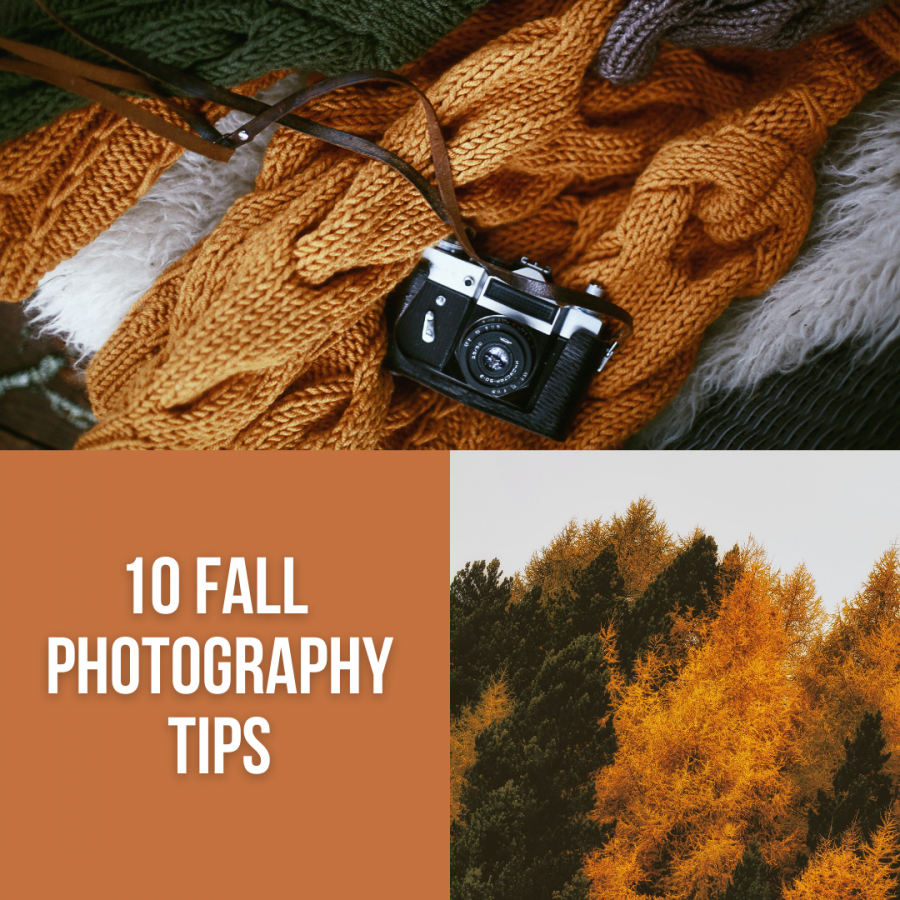 10 tips for getting the best fall photos
