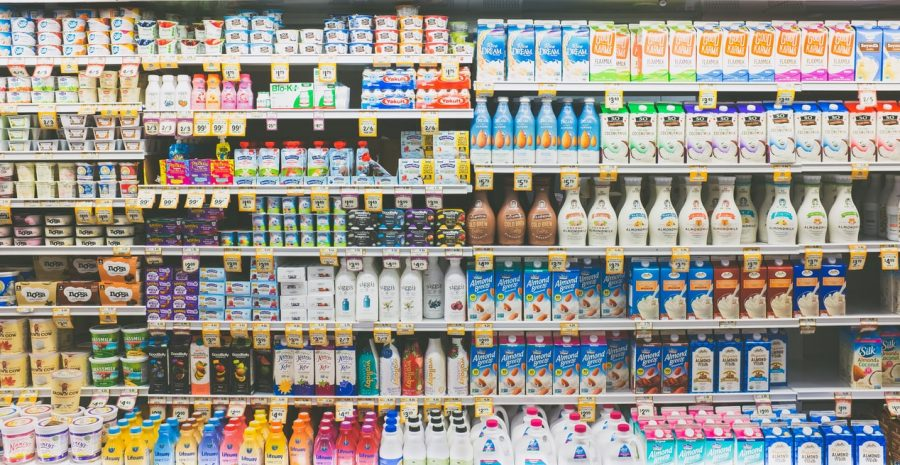 Cow milk and plant-based milk; which is better?