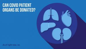 Can COVID patients' organs be donated?