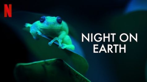 """Night On Earth"" Netflix documentary review"