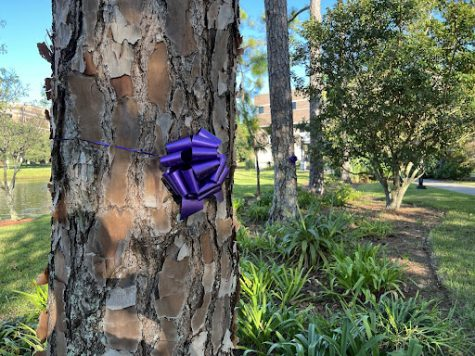 Two purple ribbons sit facing the UNF School of Business in support of Domestic Violence Month.